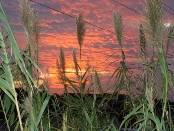 Sunset IN Ocracoke, NC