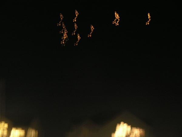 Unexplained lights over Outer Banks, NC (Rodanthe, NC)