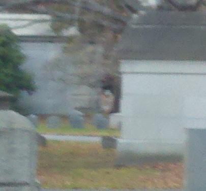 Woodlawncemetery  indian boy apparition