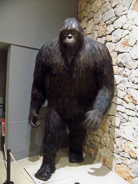 Bigfoot exhibit