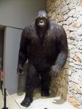 Bigfoot exhibit