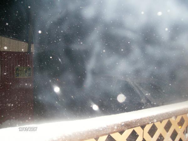 Alien grey in the snow storm