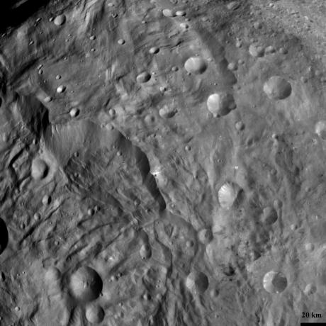 Complex Structures in Vesta's South Polar Region