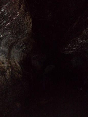 Reptilian in a Cave