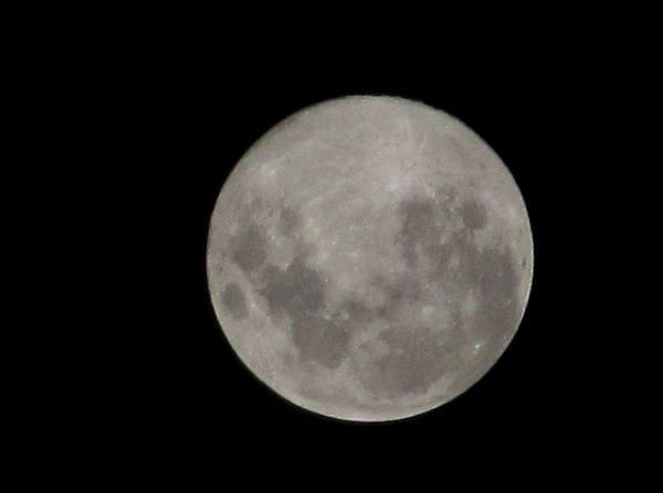 The Moon (compact camera)