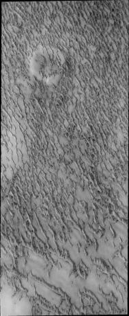 Mars Odyssey - More Polar Dunes