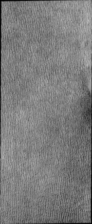 Mars Odyssey - North Polar Dunes