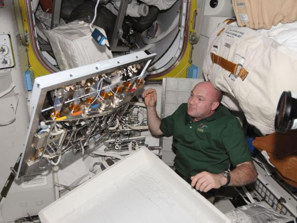 International Space Station - Astronaut Andre Kuipers in Quest Airlock