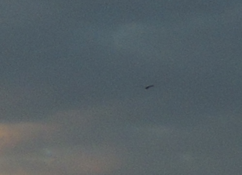 Ufo in sceney (zoomed and cropped)