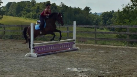 Jumping on Reina (my trainer's horse)