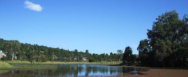 Mt Warren Park wilderness? (Eagleby park)