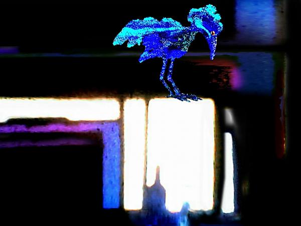 BIRD BLUE MYSTERY