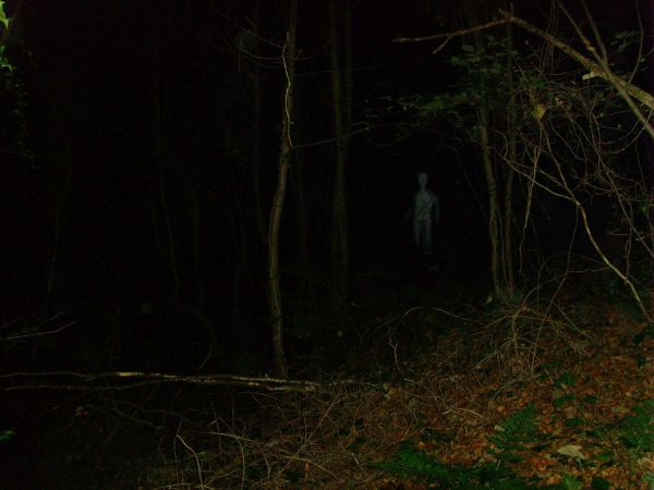 Ghost At Kings Cliff Near North Petherton In Somerset   2008