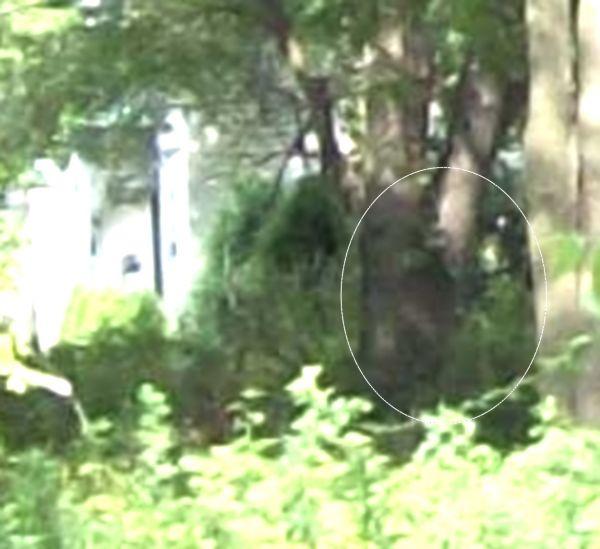 Aliens across The creek?