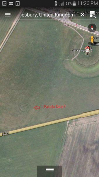 Panda Face SE Of Stonehenge site