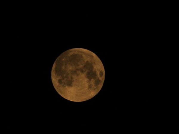 One of the bloodmoon pictures i got