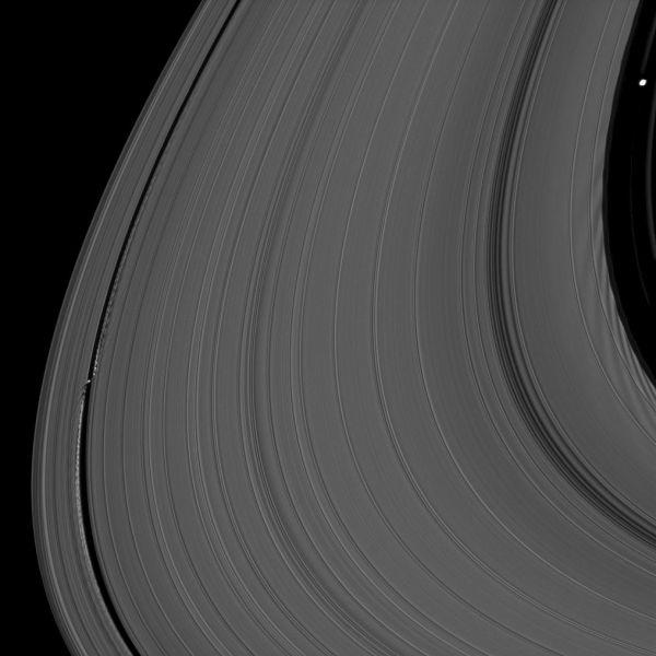 Cassini - Ring Moons' Effects