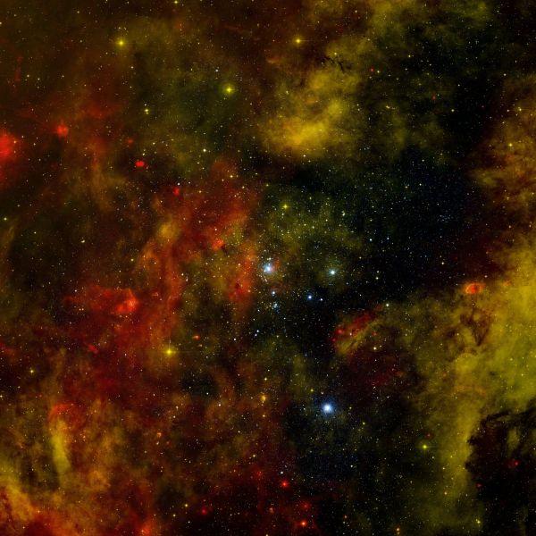 A Nearby Stellar Cradle