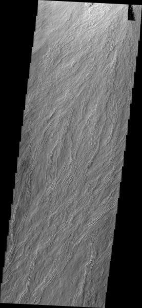Mars Odyssey - Olympus Mons