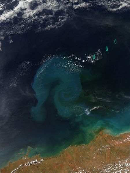 Sediment from Tropical Cyclone Rusty