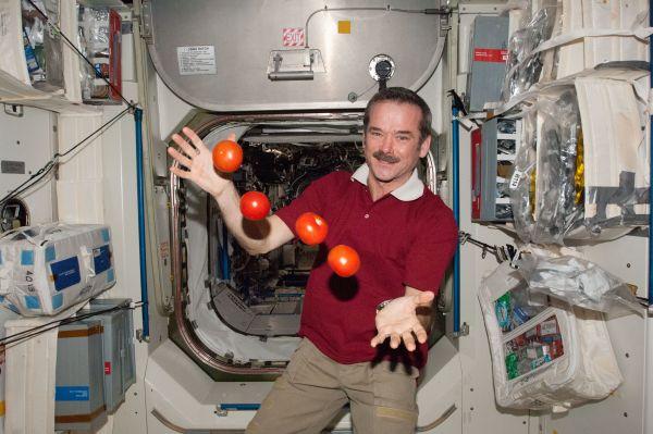 Expedition 34 Flight Engineer Chris Hadfield