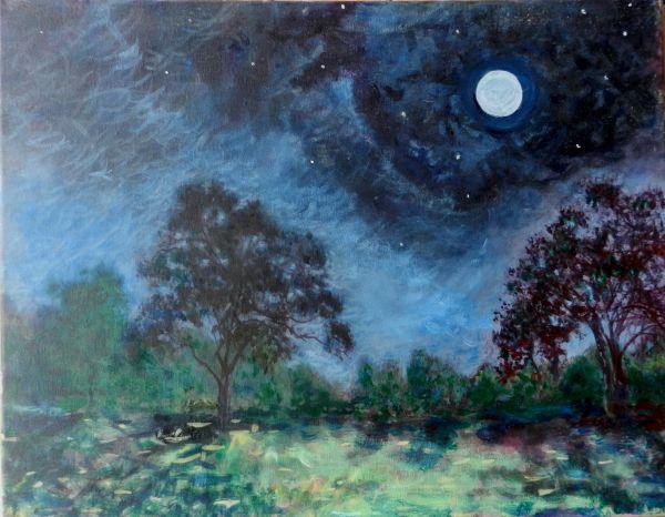 Full Moon, Bandera County, Texas
