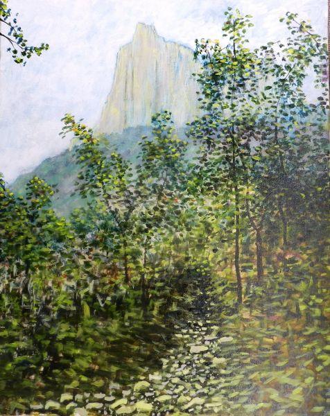 Chisos Mountain Trail