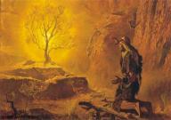 Plasma life in the bible Burningbush