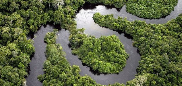Amazon rainforest could turn into grasslands News-amazon-river