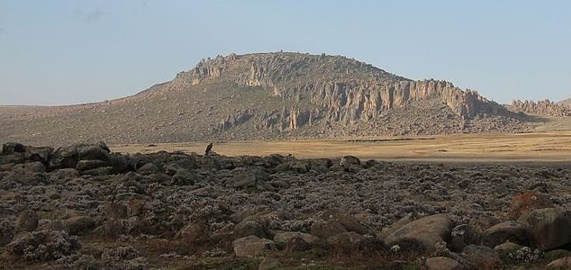 Earliest evidence of human mountaineers found News-bale-mountains