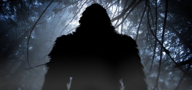 Japan's Bigfoot mystery endures 50 years on News-bigfoot-shadow