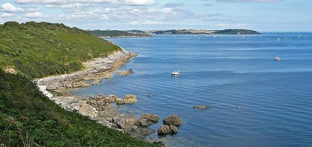 The story of Morgawr - Nessie's Cornish cousin News-falmouth-bay