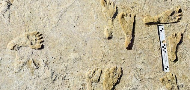 Oldest human footprints in North America found News-footprints-white-sands