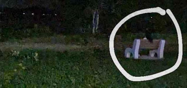 'Ghost' photographed on bench in haunted park News-ghost-bench