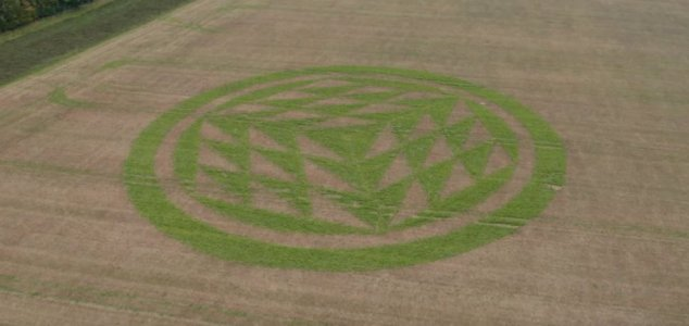 Crop circle appears bright green in autumn field News-green-crop-circle
