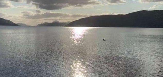 Loch Ness Monster sighting caught on video News-loch-ness-log