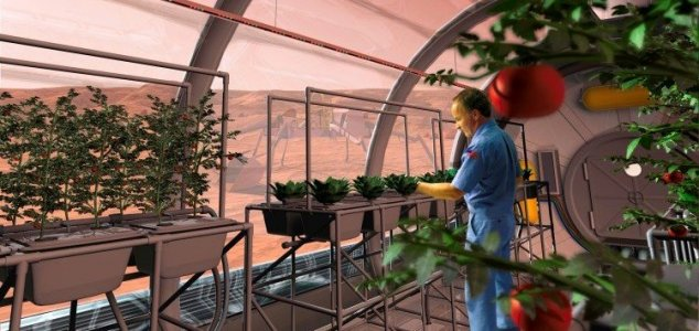 Earthworms can reproduce in Martian soil - Unexplained Mysteries