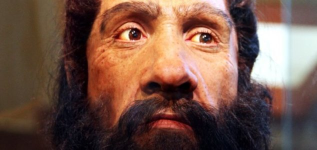 What makes us different to Neanderthals ? - Unexplained Mysteries