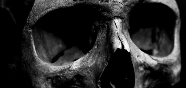 New sections of 'tower of skulls' discovered News-skull-bw