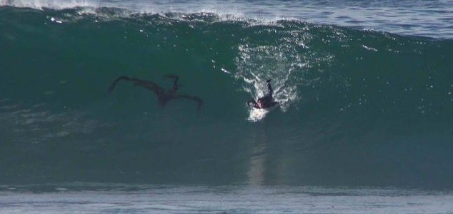Weird object spotted underwater in surfer video News-surfer